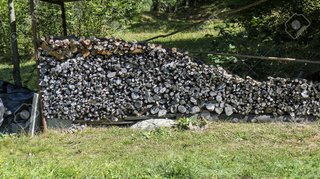 Cut wood, firewood for the winter - 97318267