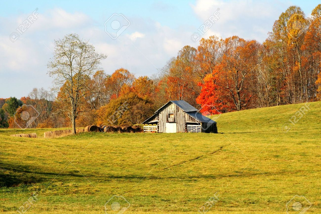 Barn with hay bales against autumn colors and a beautiful meadow with early morning light. Stock Photo - 5277541