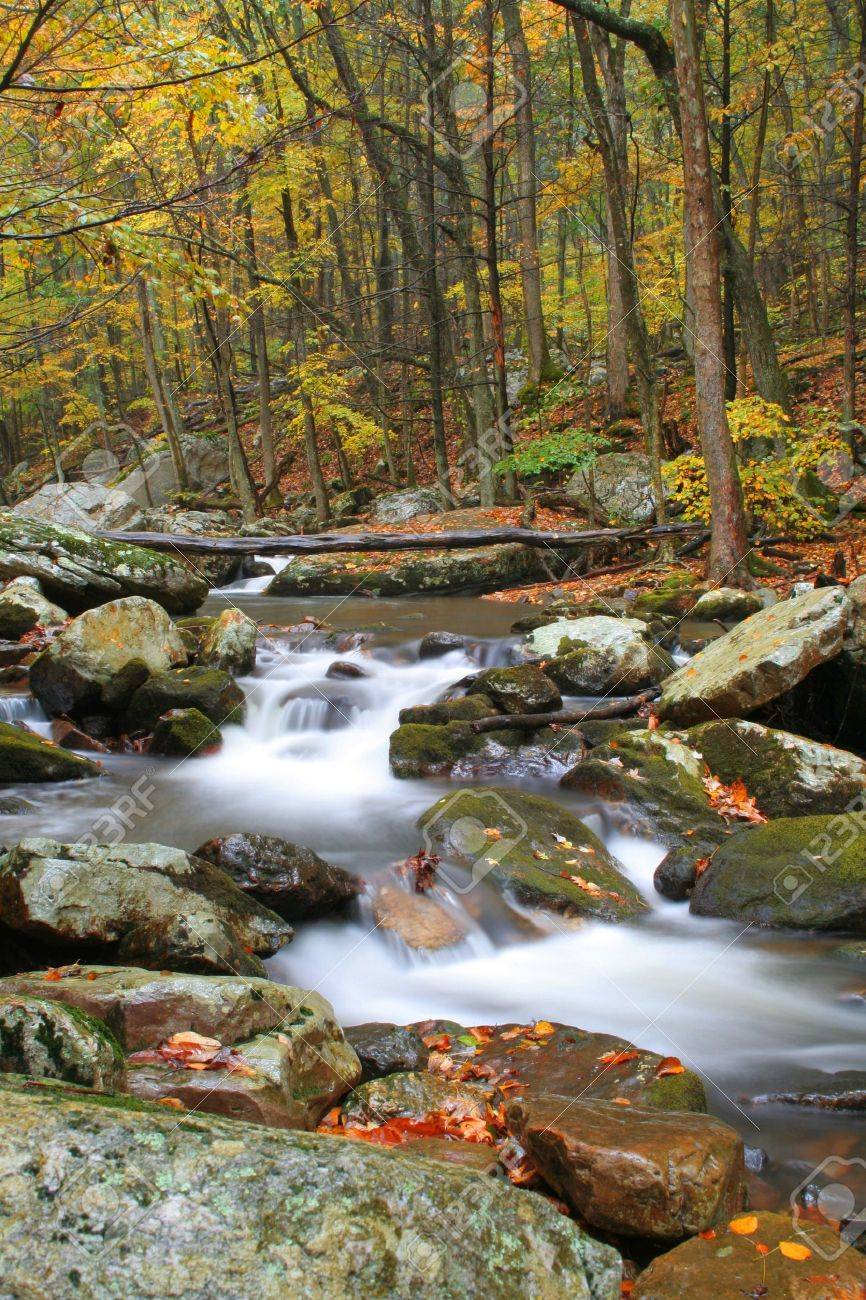 Beautiful stream during fall of the year with blurred water to have the cotton candy effect. Stock Photo - 5887031