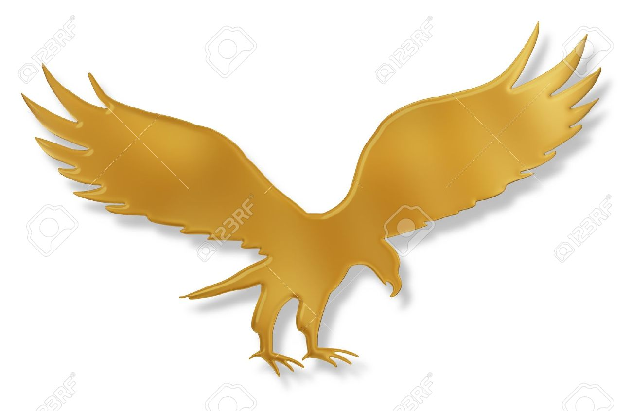 1 071 golden eagle stock vector illustration and royalty free