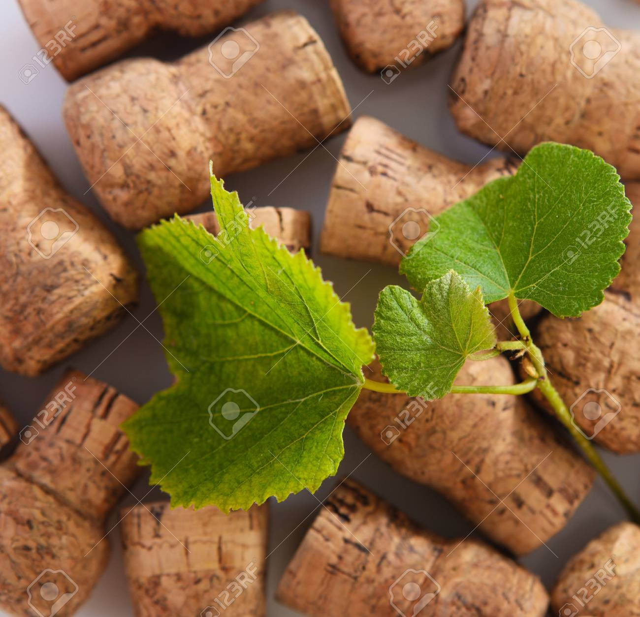 Dated wine bottle corks on the wooden background. Close up Stock Photo - 18011350