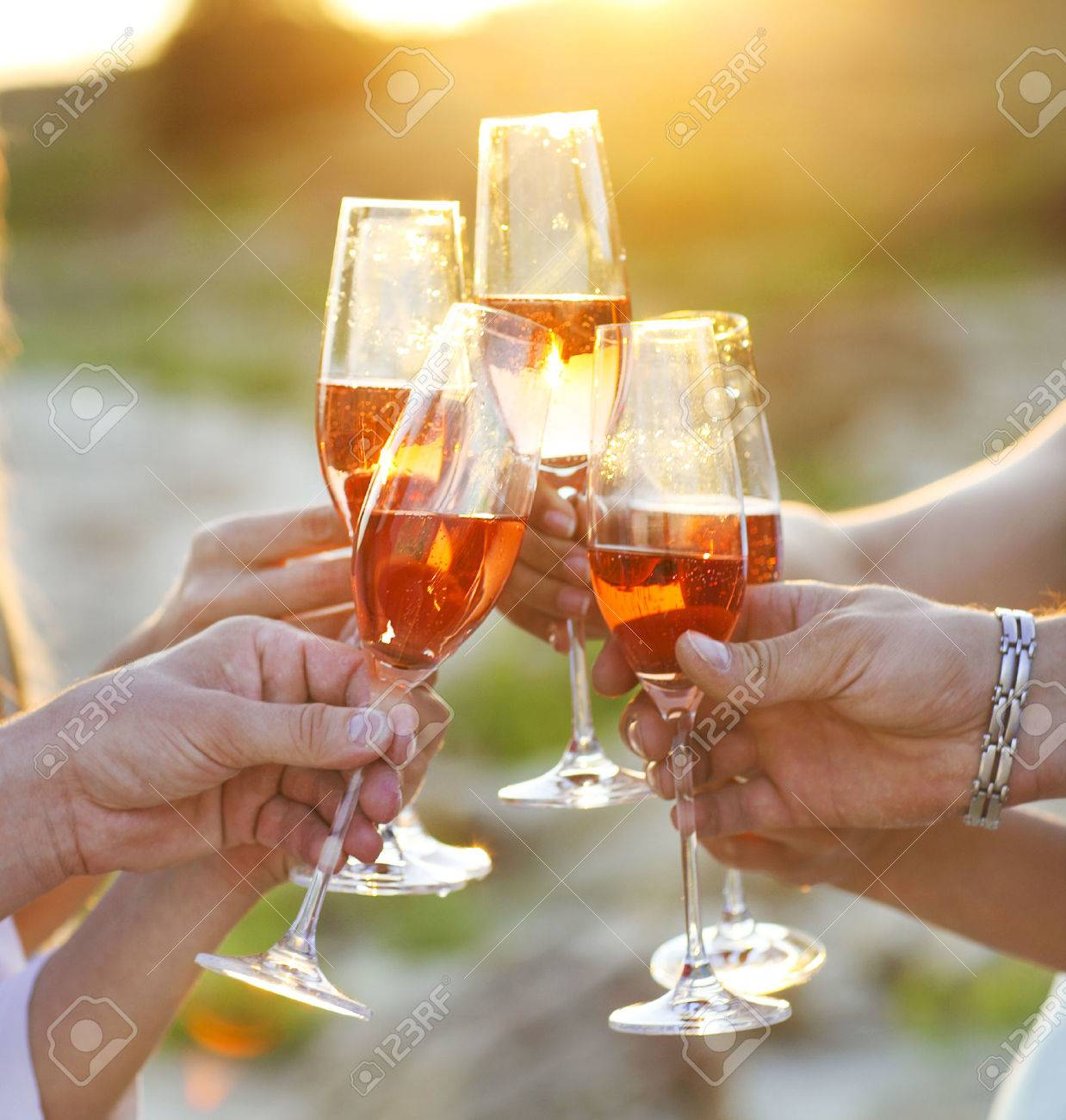 Group of friends toasting champagne sparkling wine at a relax party celebration gathering - 51168608