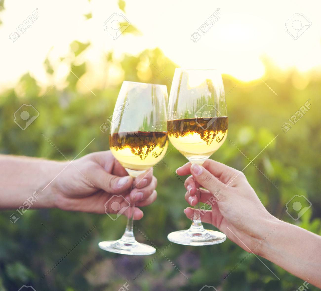 Young happy couple enjoying a glasses of white wine in the vineeard - 51168614