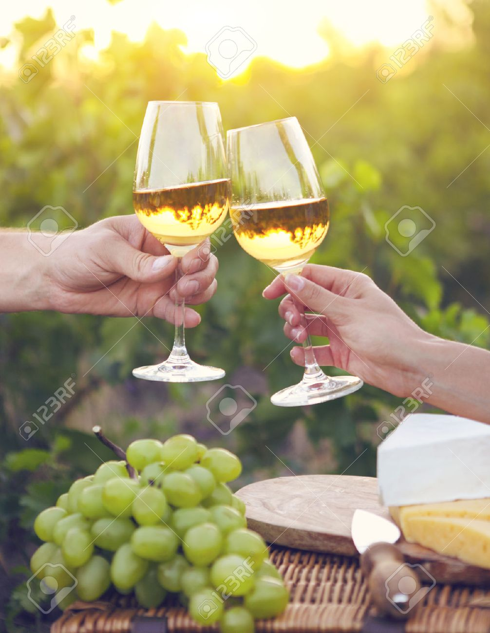 Young happy couple enjoying a glasses of white wine in the vineeard - 52124388