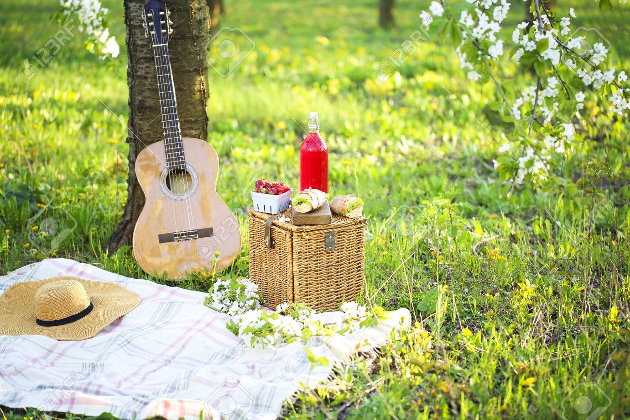 Guitar, basket, sandwiches, plaid and juice in a blossoming garden. Vintage tender background. Romance, love, date - 73940278