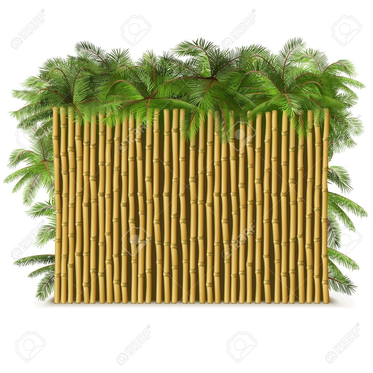 vector bambuszaun mit palm isoliert auf weißem hintergrund