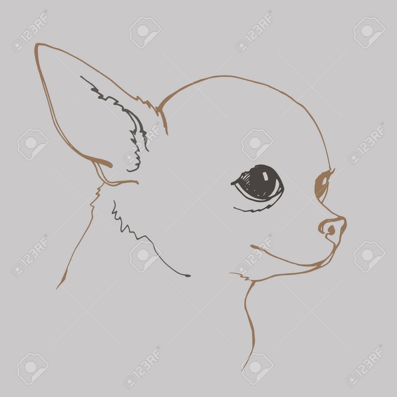 犬ベクトル小さい図面イラスト動物かわいいのイラスト素材ベクタ