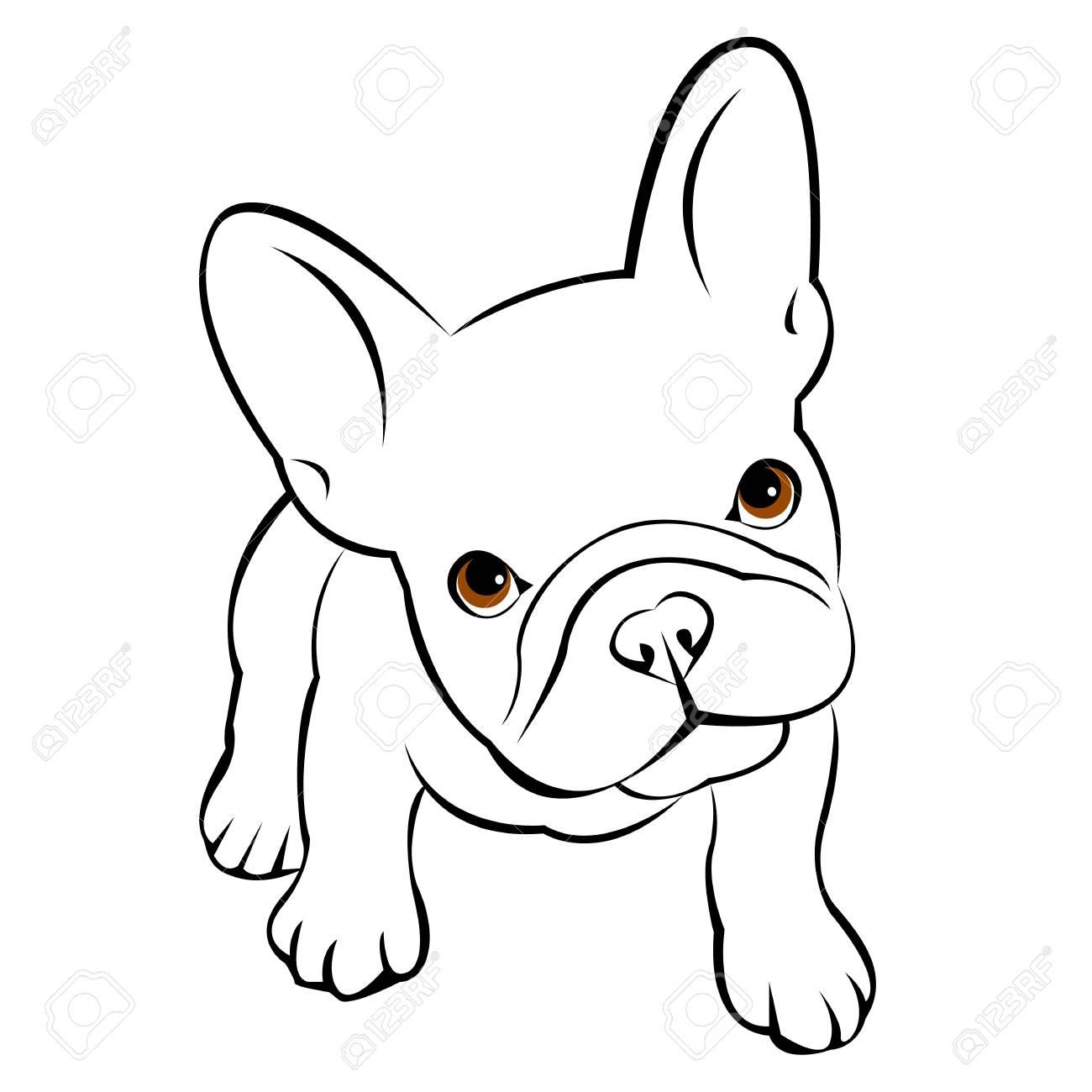 Perro Animal Francés Vector Ejemplo Mascota Raza Lindo