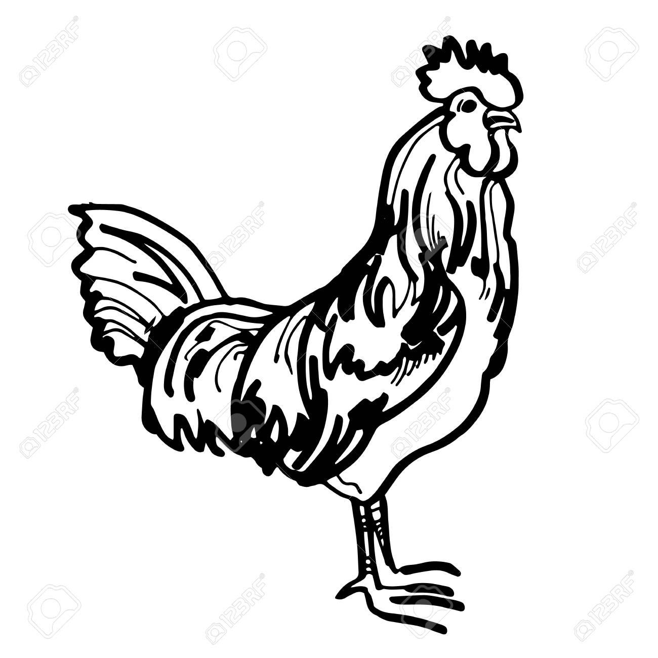 Year New Rooster Symbol Chinese Decoration Vector Sign