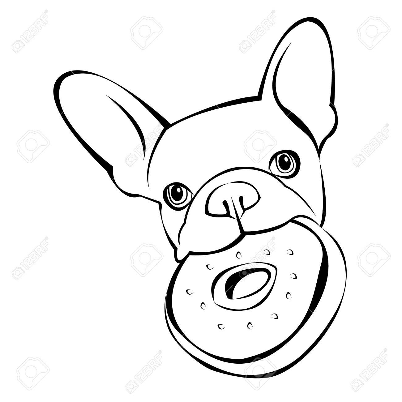 hund einfach zeichnen