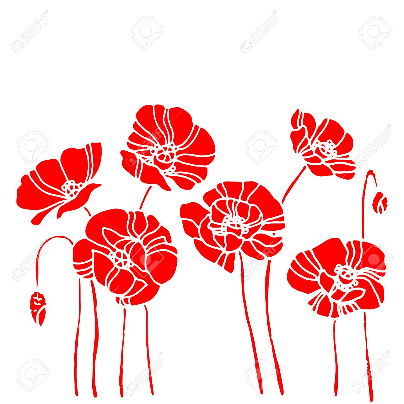 Coquelicot Nature Fleur Vecteur Plante Modele Dessin Illustration