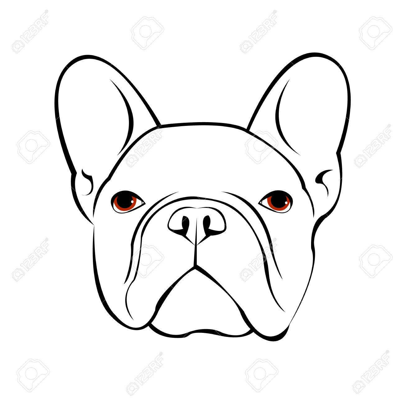 Bulldog Chien Animal Francais Vecteur Illustration Animal