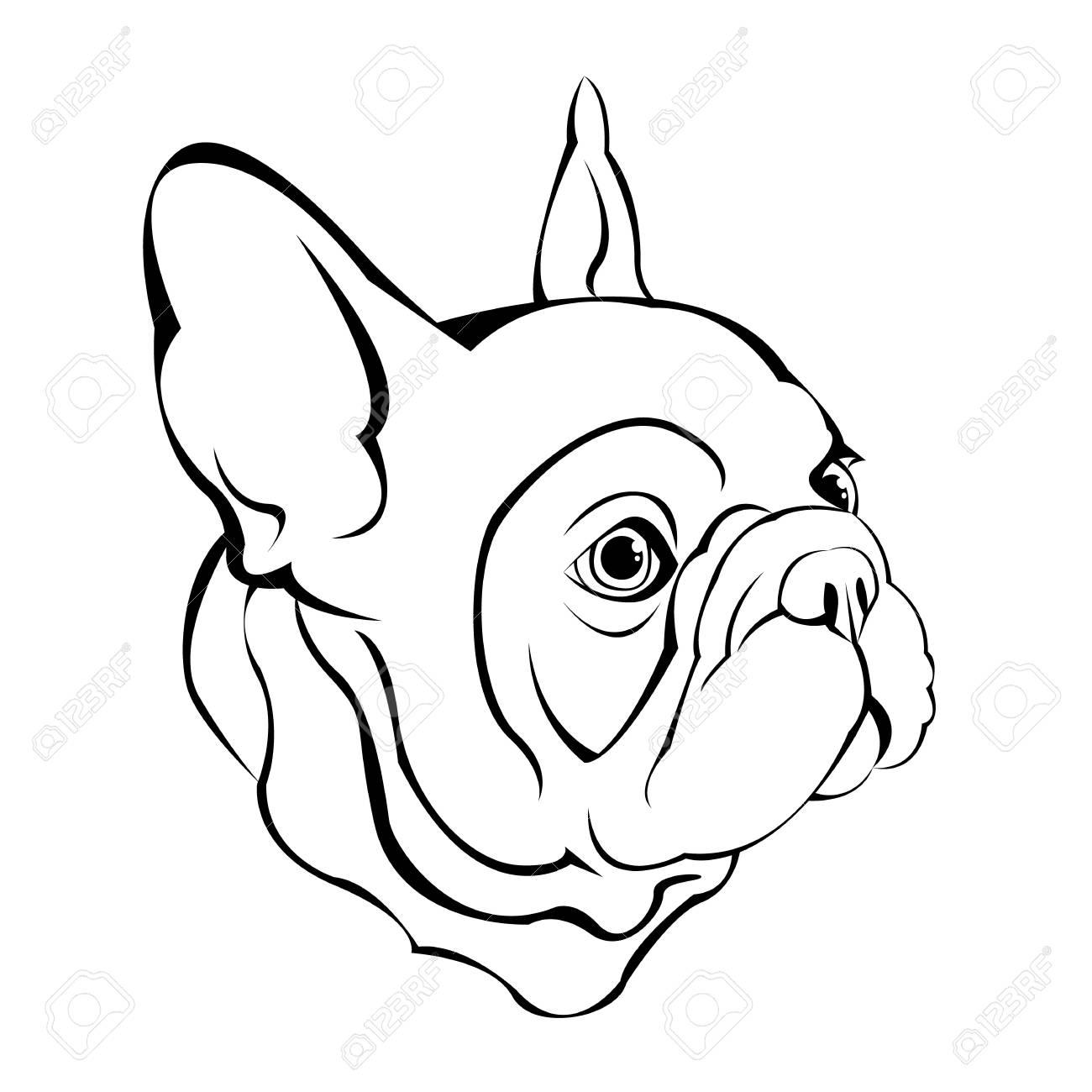 フレンチ ブルドッグポスター用イラストかわいい子犬のイラスト