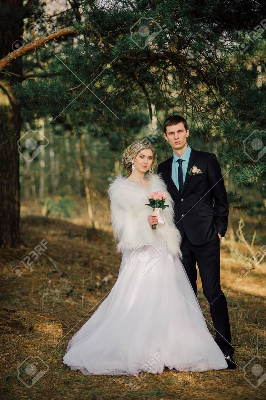 Braut Und Brautigam In Einem Park Kissing Couple Jungvermahlten