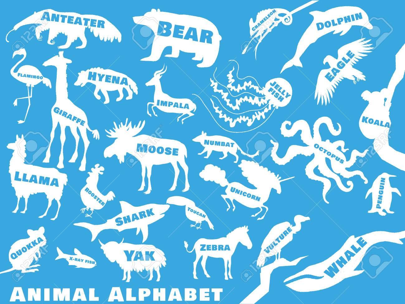 Tieralphabetplakat Für Kinder. Tier-Silhouetten Mit Namen Und ...