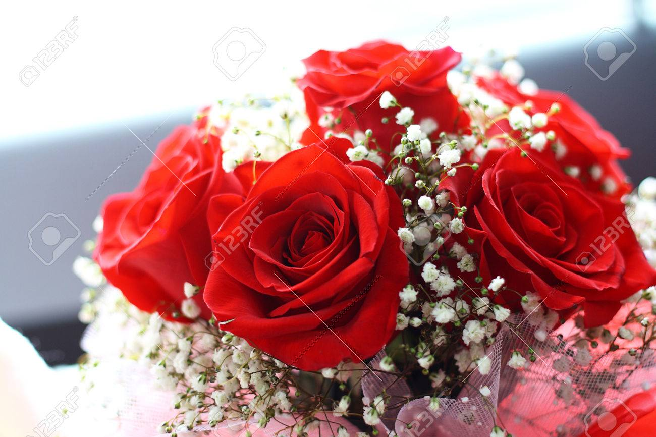 Red Rose And Small White Flowers Bouquet Stock Photo, Picture And ...