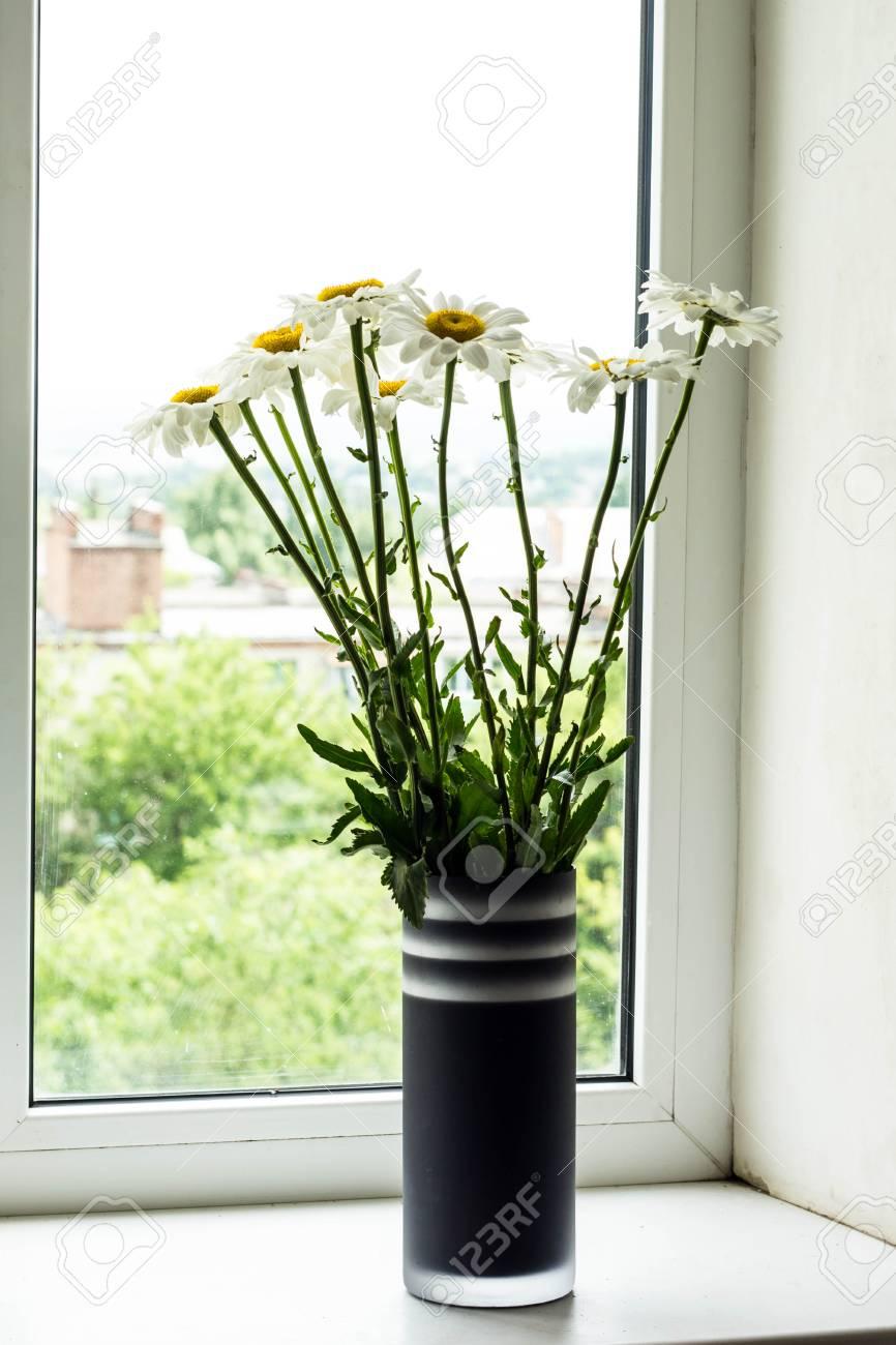 Blumenstrauss Aus Kamillen Blumen Auf Der Fensterbank Lizenzfreie