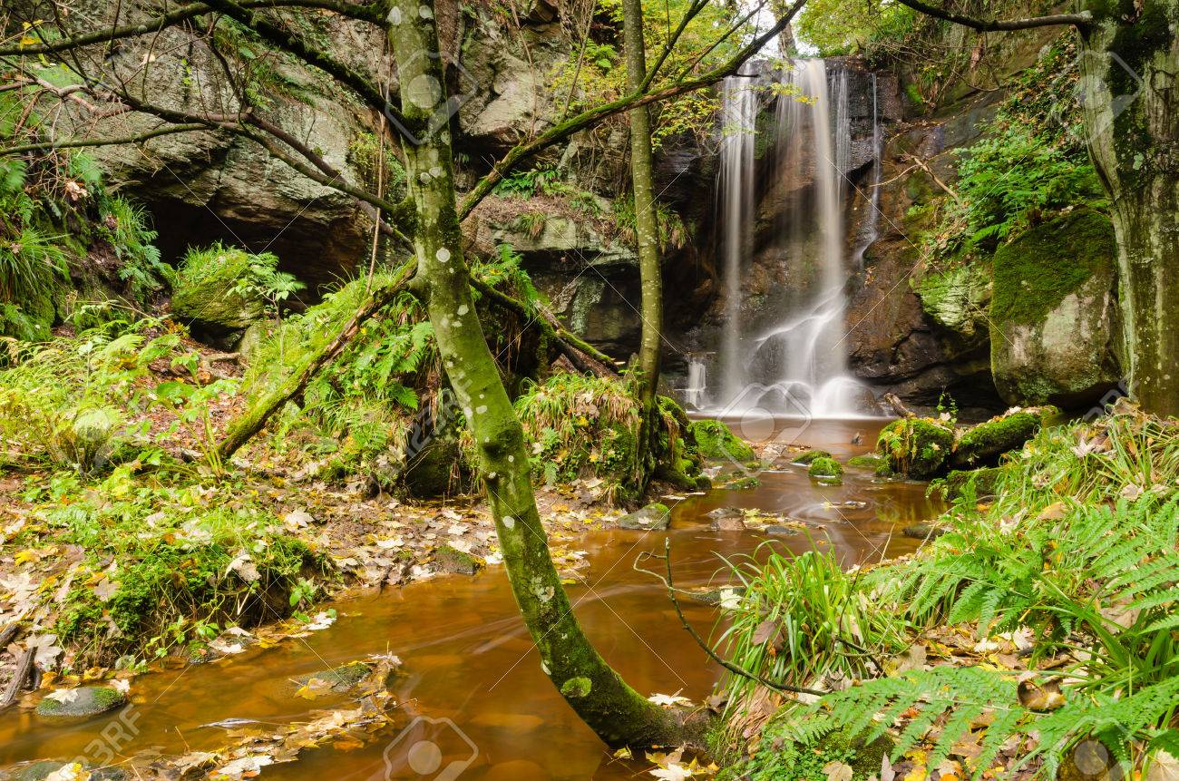 Roughting Linn is a little known secluded waterfall in woodland in north Northumberland - 23842974