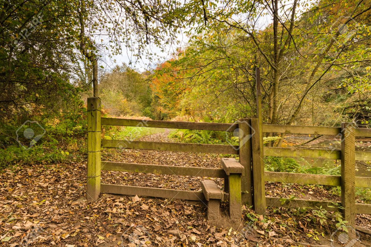 Stile In Plessey Woods Country Park Located In South Northumberland