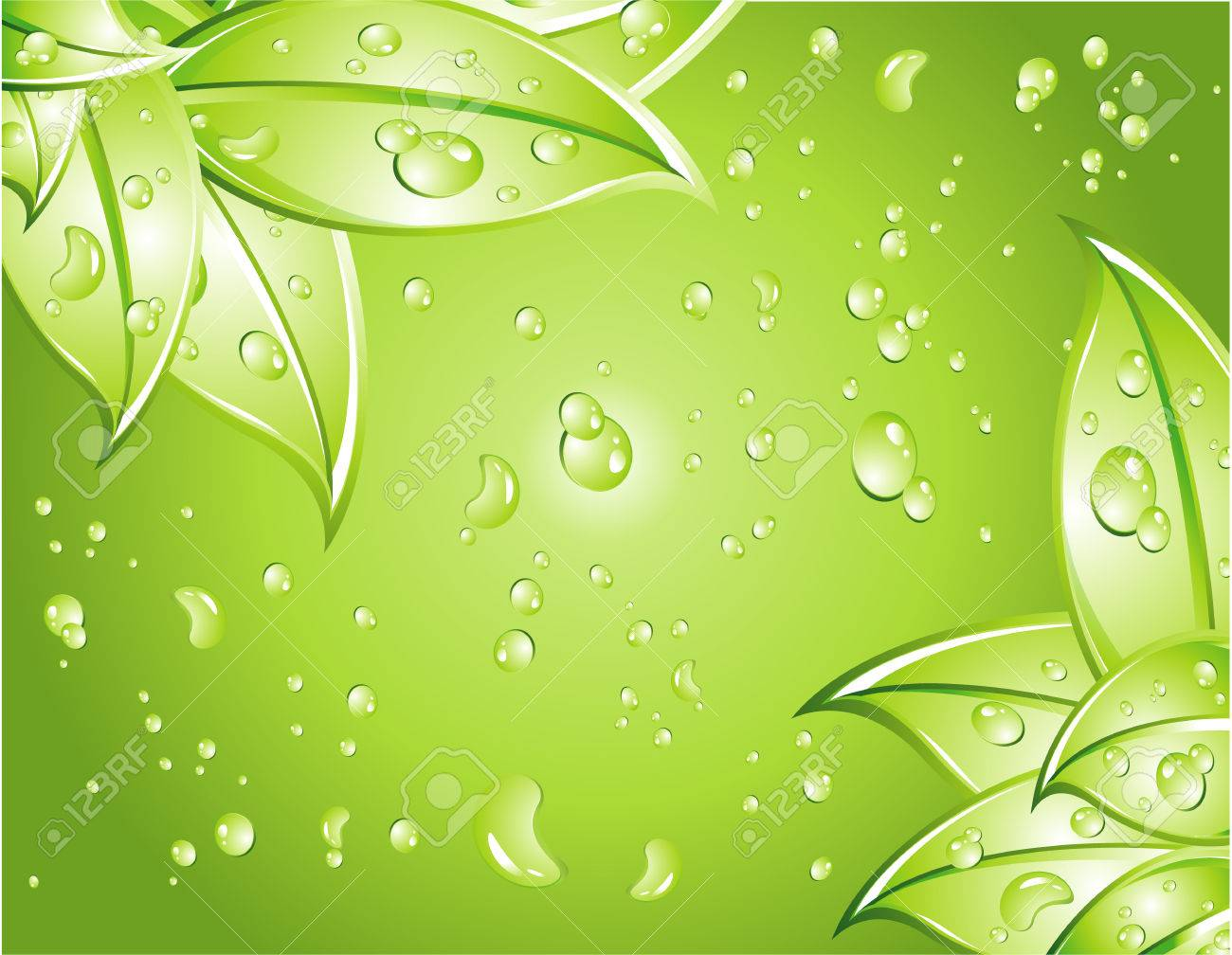 Leaves Background with water drops background Stock Vector - 4896982