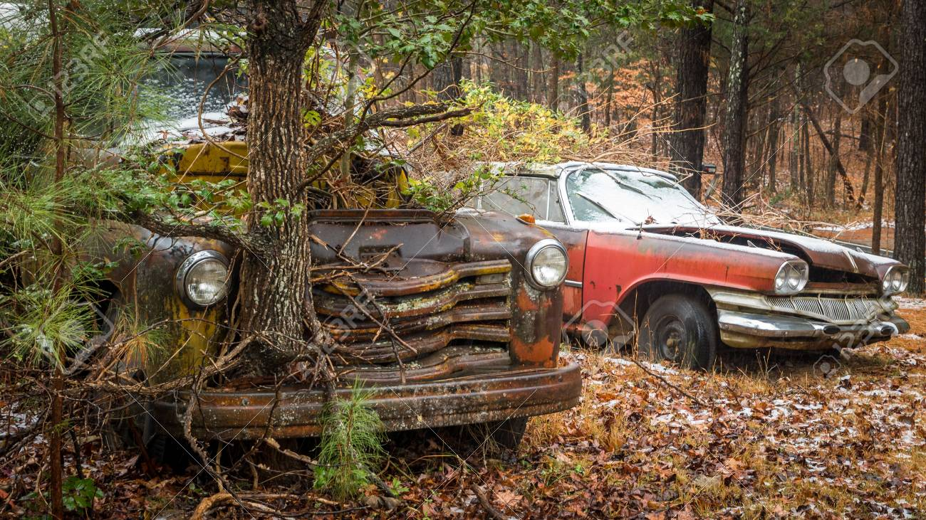 https://previews.123rf.com/images/davideconopouly/davideconopouly1801/davideconopouly180100002/94362111-a-car-and-a-truck-with-a-tree-growing-out-of-the-front.jpg