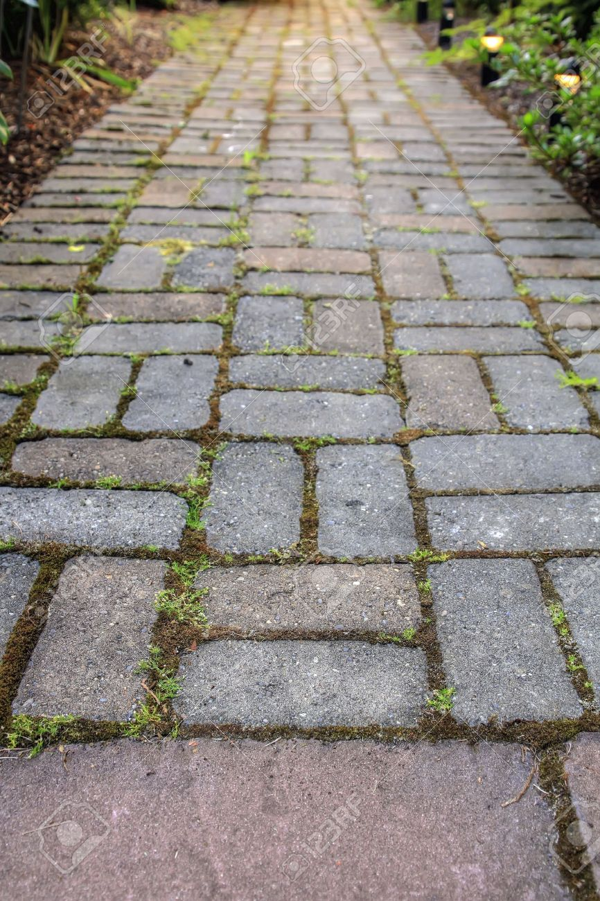 Brick Pavers Garden Path With Moss In Landscaping Stock Photo
