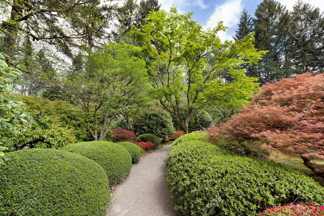 Garden Path Lined With Lush Plants And Trees In Portland Japanese