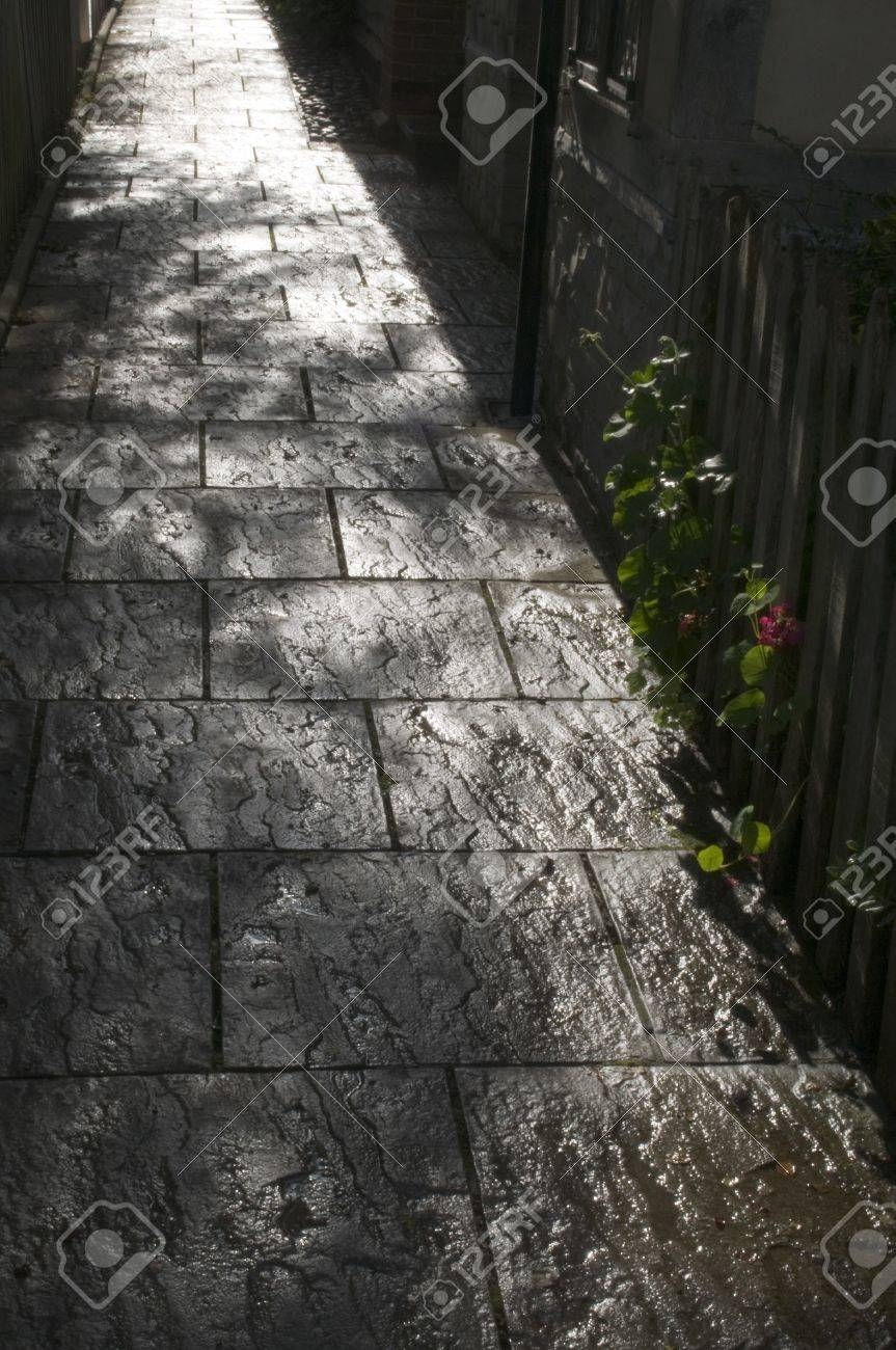 a garden path leading into the distance Stock Photo - 4033494