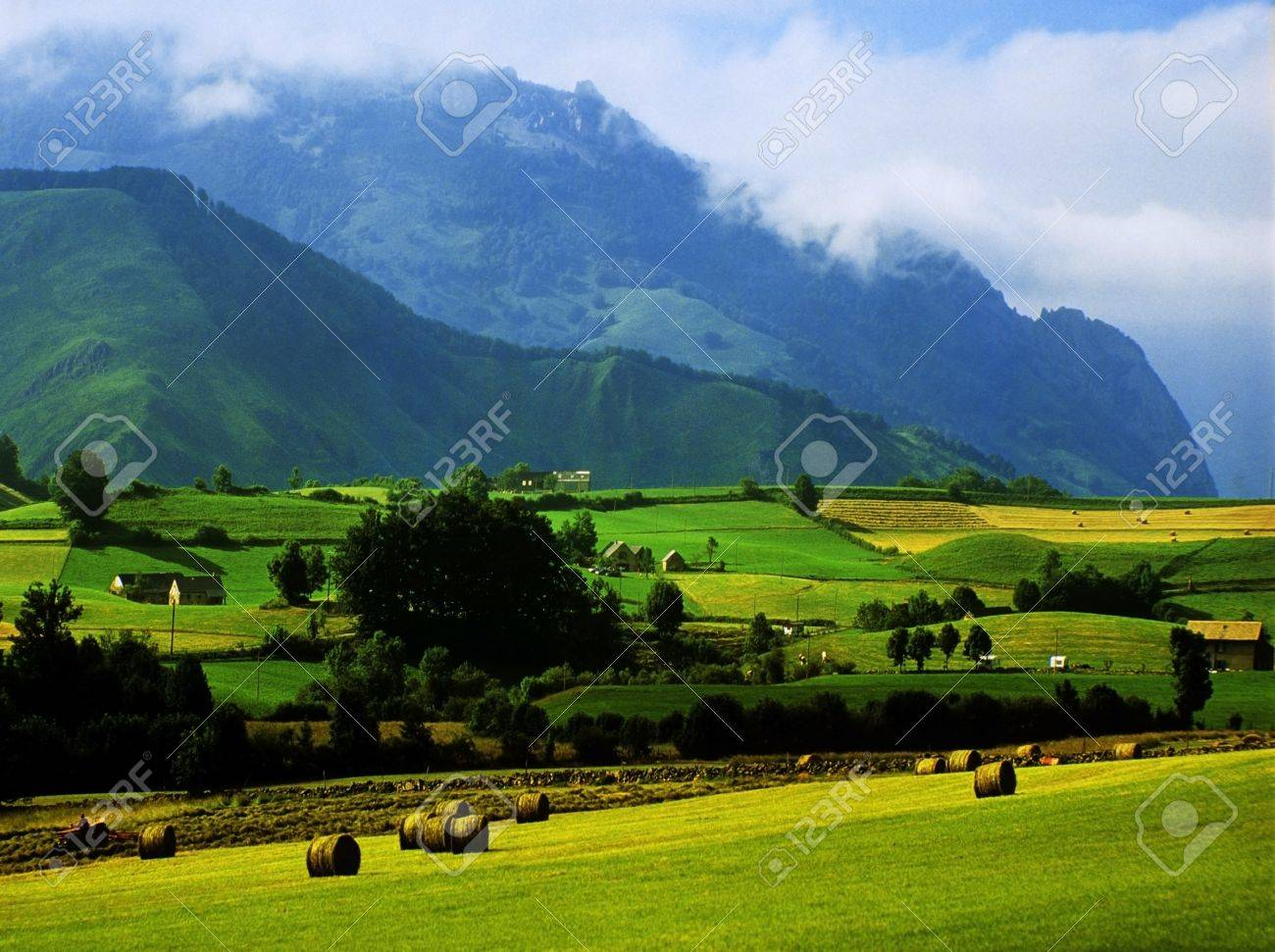 a farm and crops in the pyrenees , france Stock Photo - 11771083