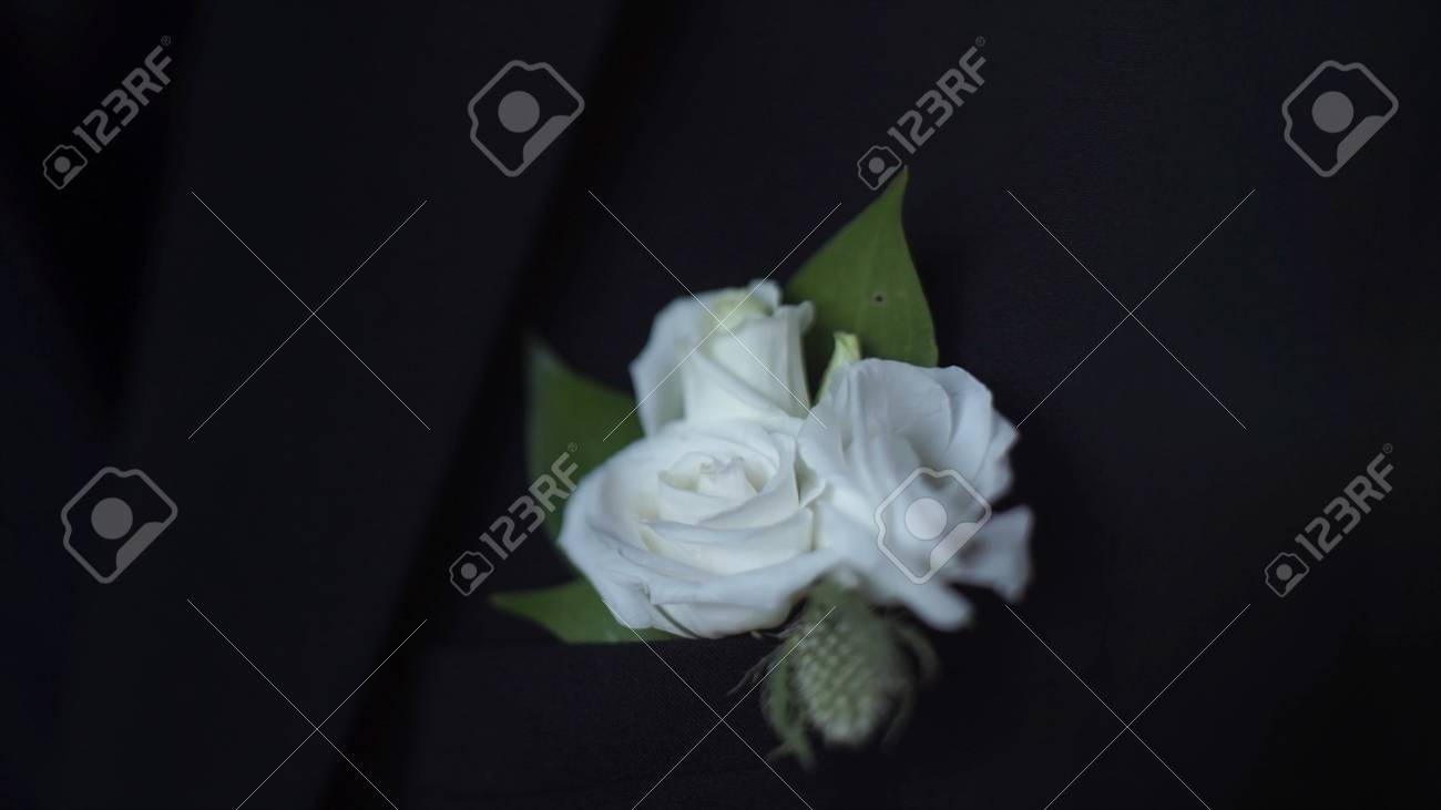 White Flower In His Jacket Pocket Closeup Groom Boutonniere Stock