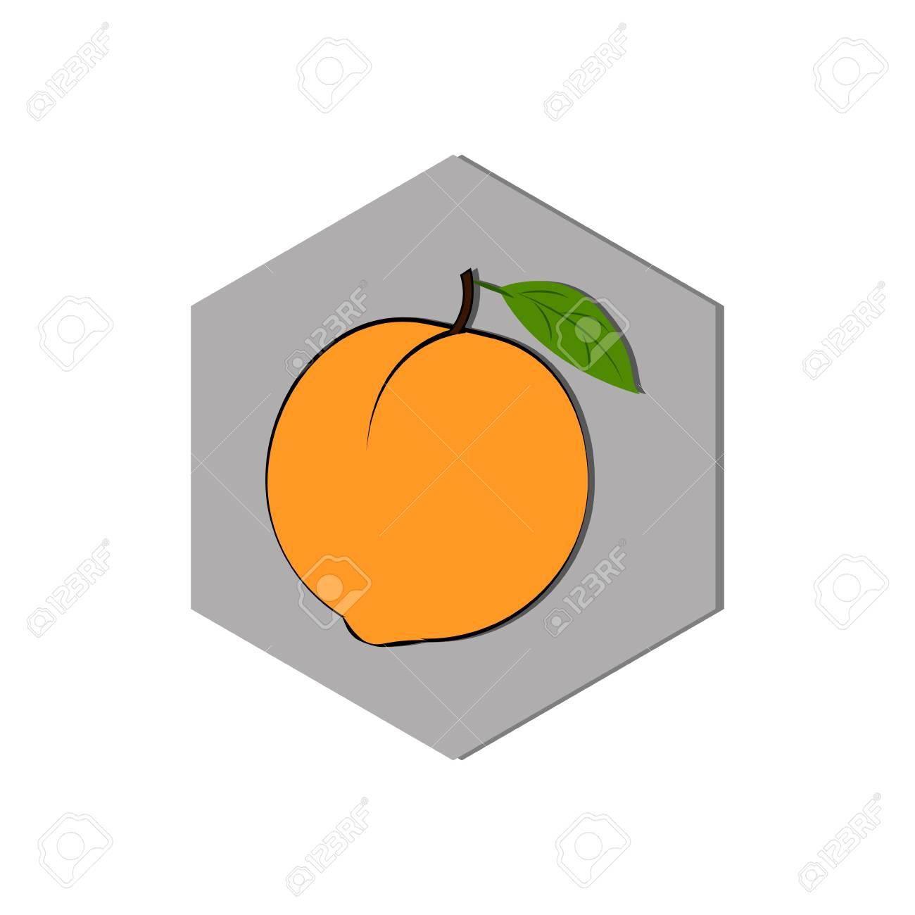 Orange Fruit Abstract Food Icon Illustration