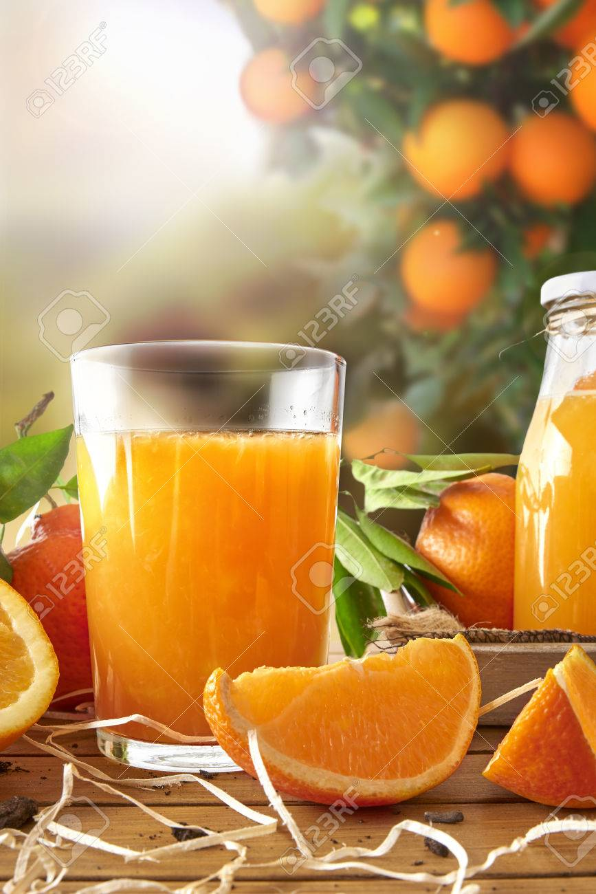 Glass of orange juice on a wooden table with bottle and orange sections. Tree and field background with evening sun. Vertical composition. Front view - 51575928