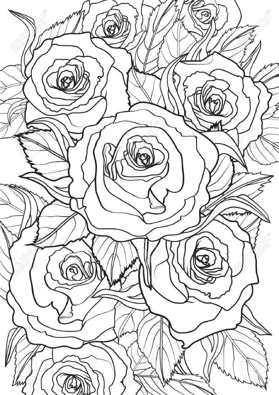 Adulto Ilustración De Libros Para Colorear Conjunto Tatuaje Rosas Ilustración