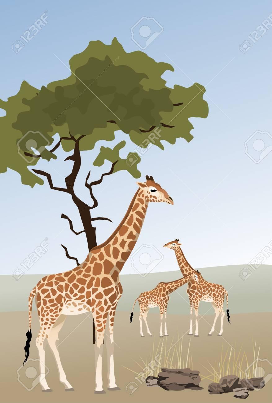 Illustration of giraffes in savannah Stock Vector - 7106170