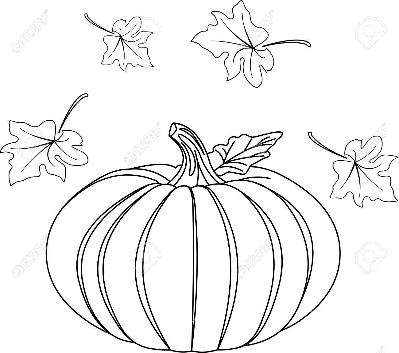 751 coloring pumpkin cliparts stock vector and royalty free