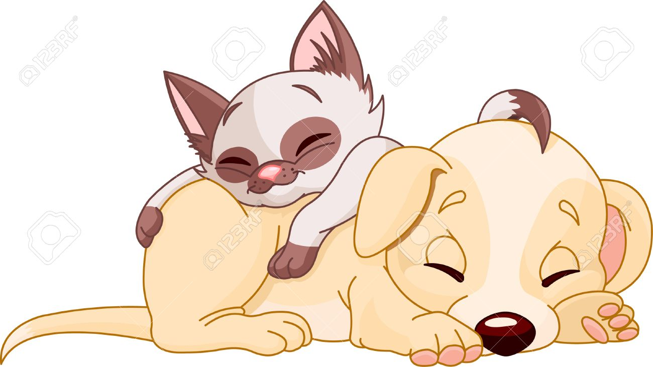 Cute Puppy and adorable kitten are sleeping Stock Vector - 6951099