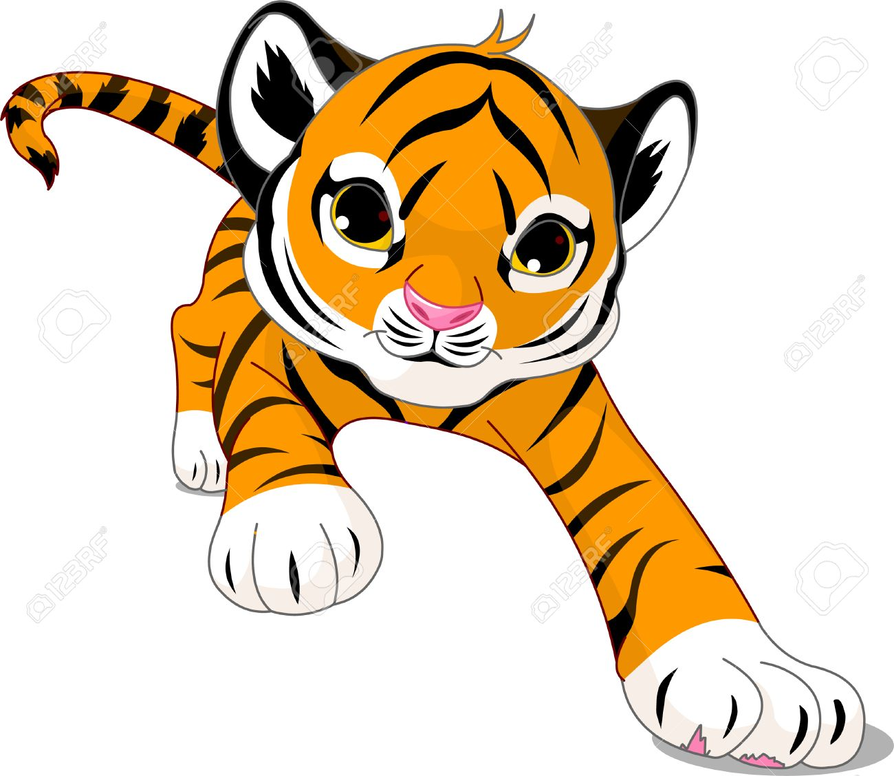 36 128 tiger stock vector illustration and royalty free tiger clipart rh 123rf com free clipart tiger paw prints free clipart tiger head