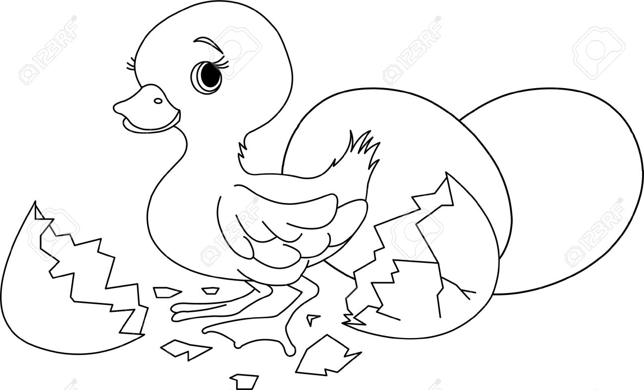 Easter Duckling Jumping Out From Broken Egg Coloring Page Stock Vector