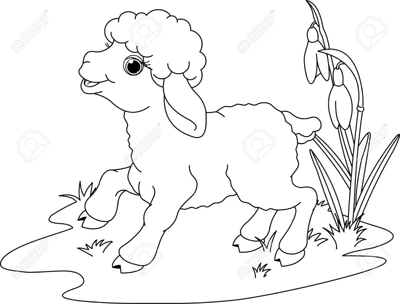 cartoon lamb stock photos u0026 pictures royalty free cartoon lamb