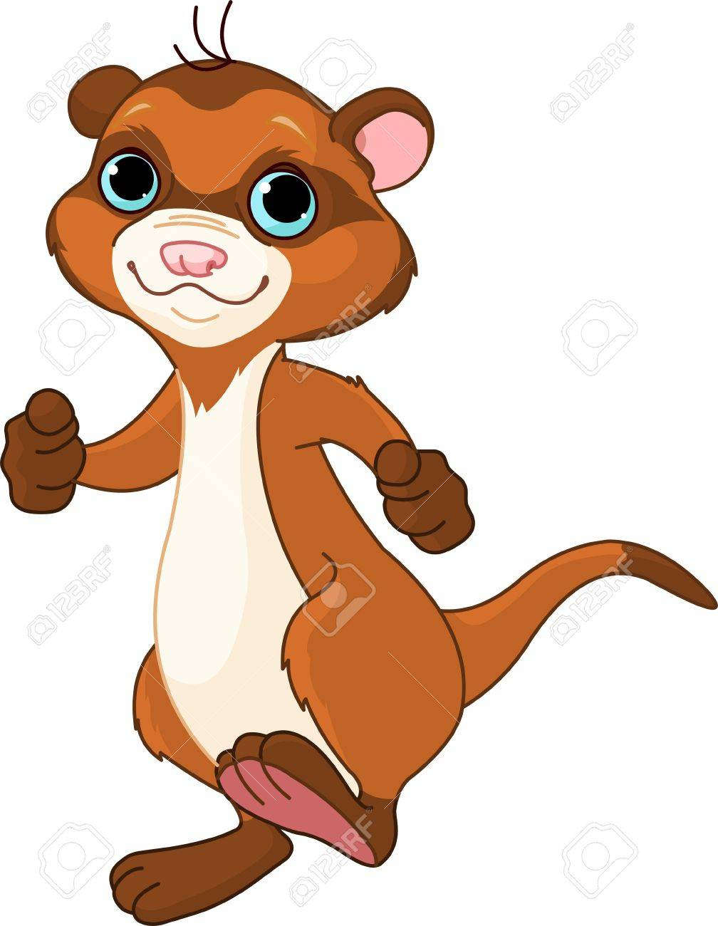 889 ferret cliparts stock vector and royalty free ferret illustrations rh 123rf com ferret clipart