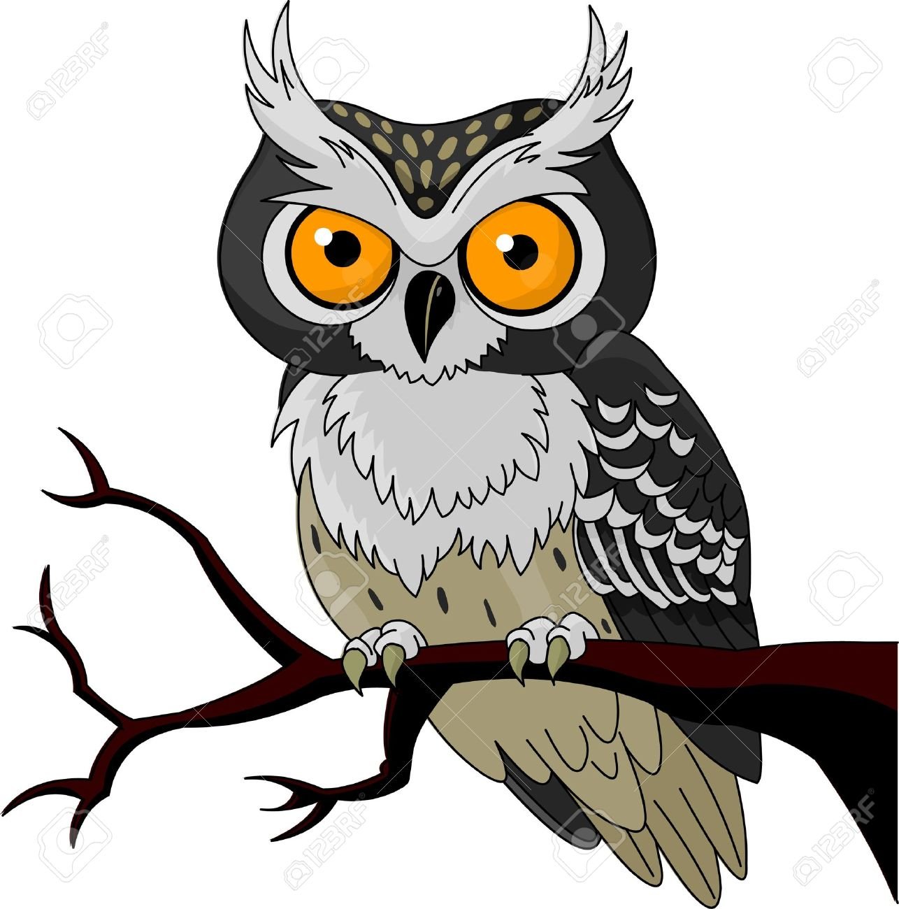 owl sitting upon a tree branch royalty free cliparts vectors and