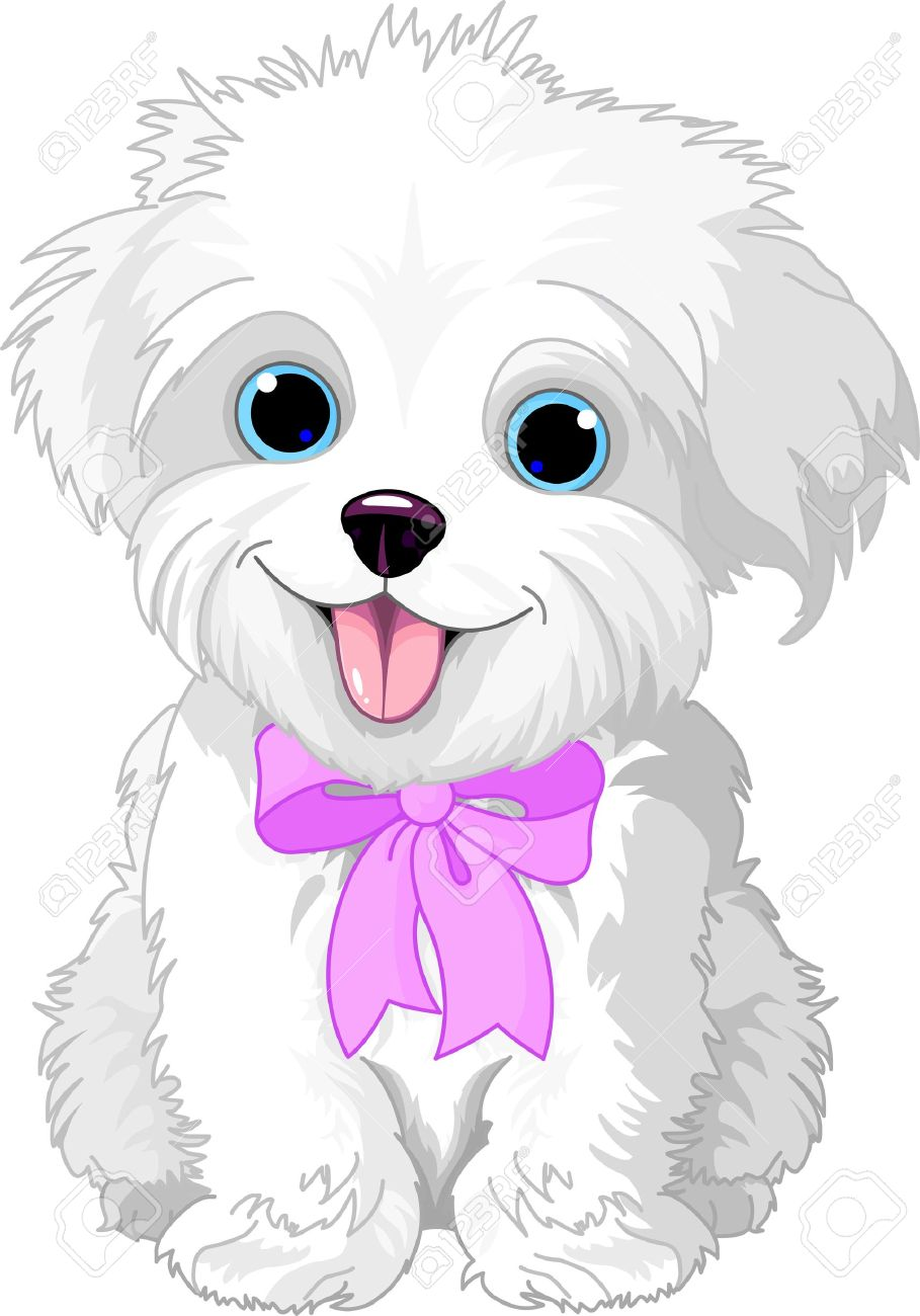 Cute White Lap Dog Puppy Posing With Pink Ribbon Royalty Free Cliparts Vectors And Stock Illustration Image 14222593