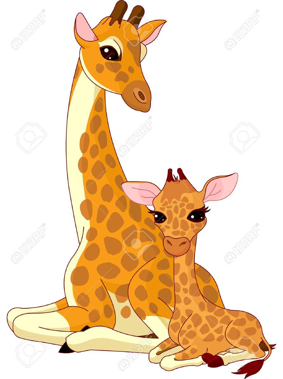baby giraffe stock photos royalty free baby giraffe images and