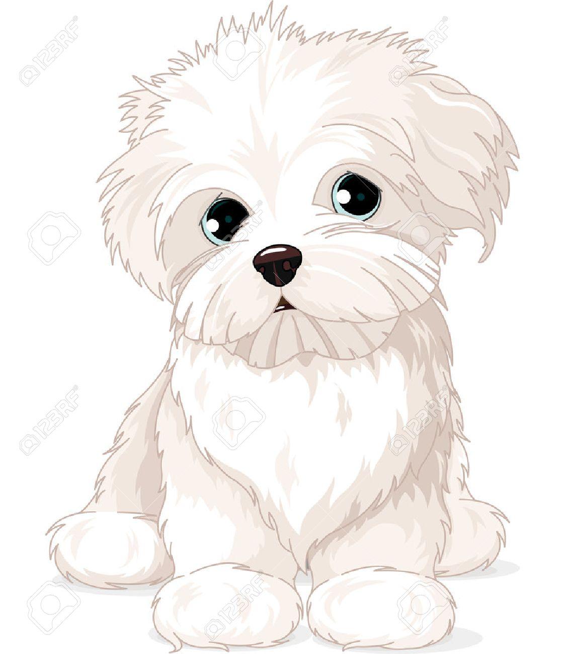 clipart maltese puppy dog royalty free cliparts vectors and stock rh 123rf com maltese flag clipart maltese dog clipart