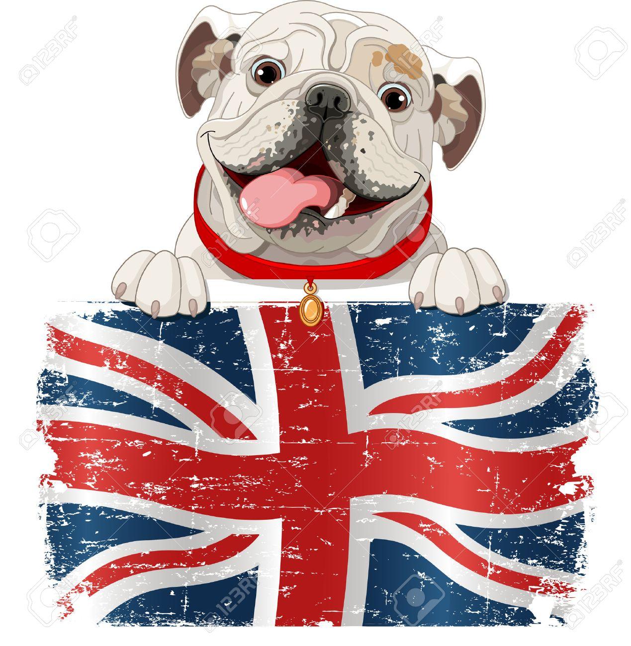 Bulldog Inglés Sobre La Bandera Británica Ilustraciones Vectoriales ...