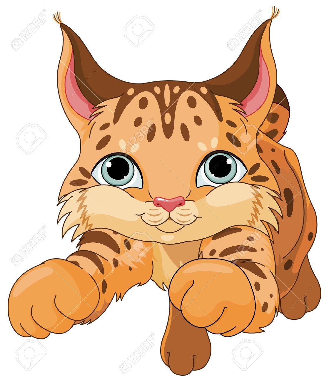 Illustration de lynx mignon Banque d'images - 42548564