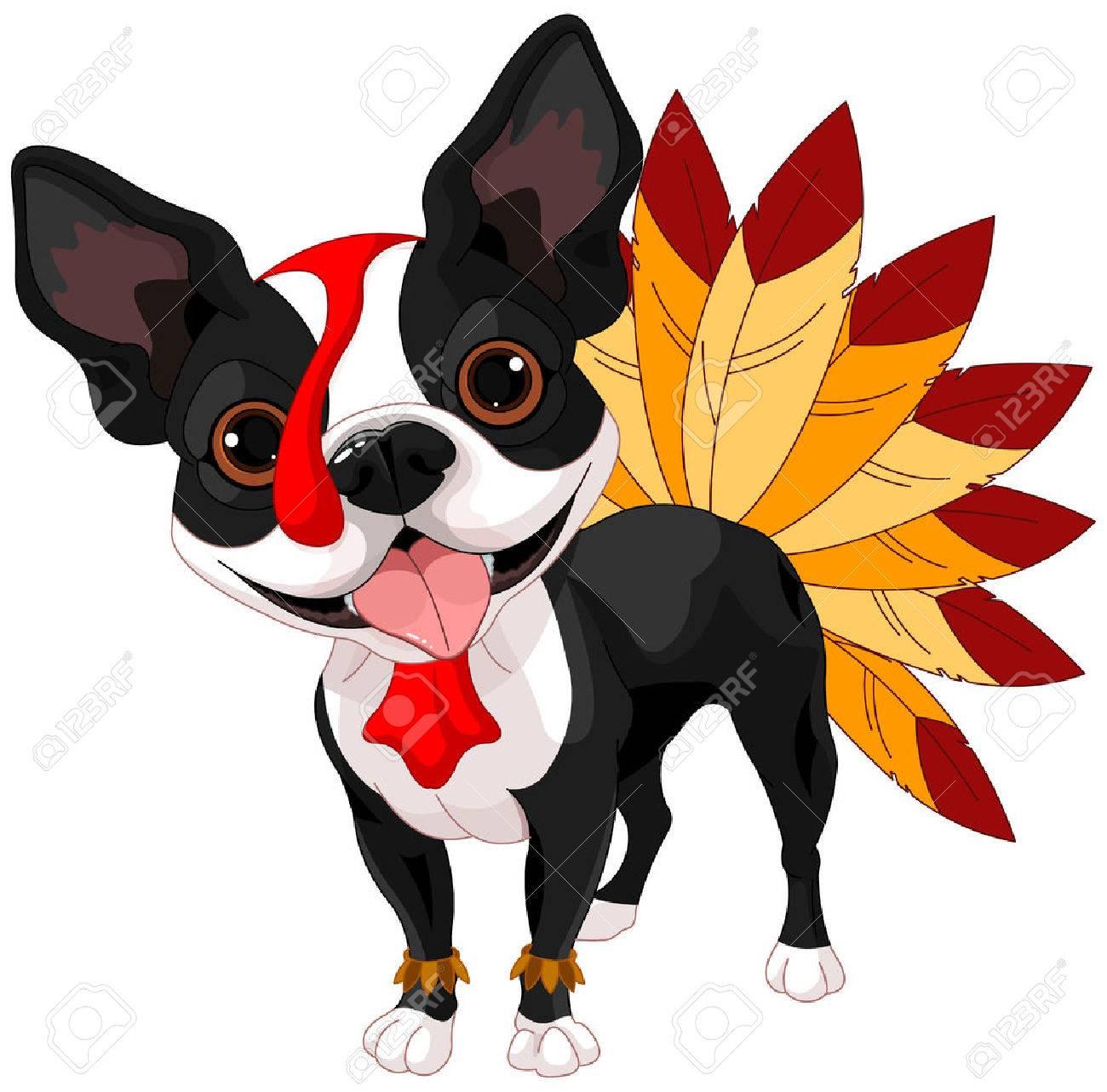 Illustration de mignon terrier de Boston célébrer Thanksgiving Banque d'images - 45297814