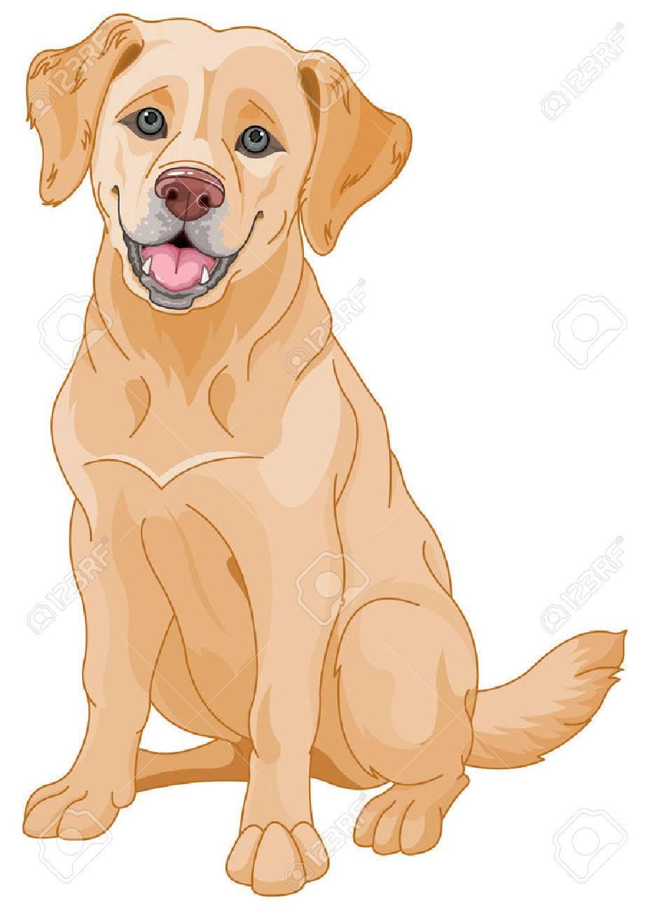Illustration de chien mignon Golden Retriever Banque d'images - 46230245