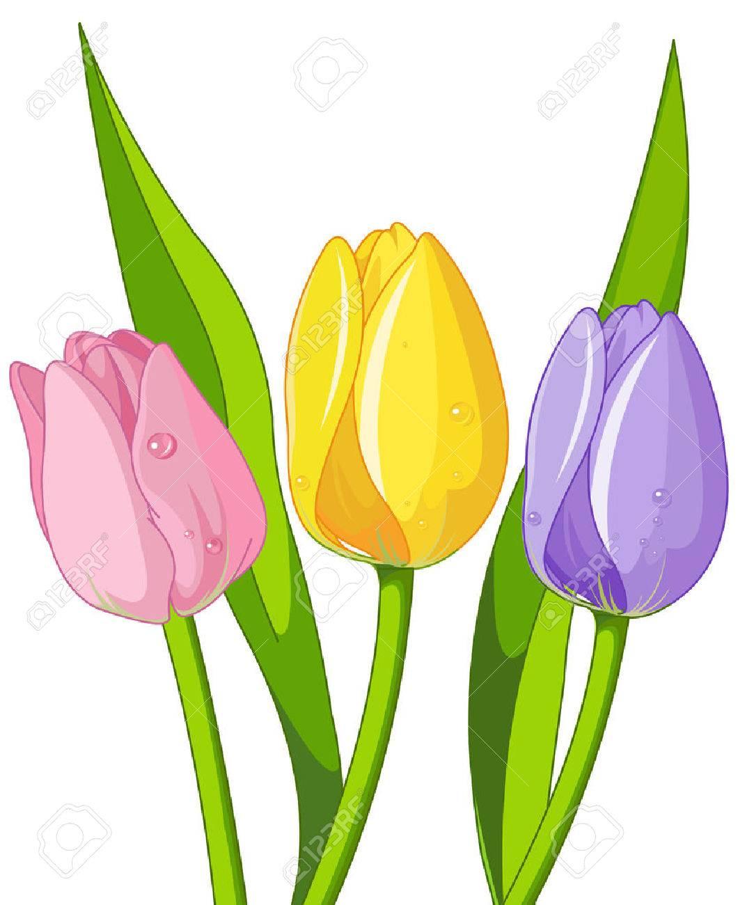 Illustration of bouquet tulips - 50902230