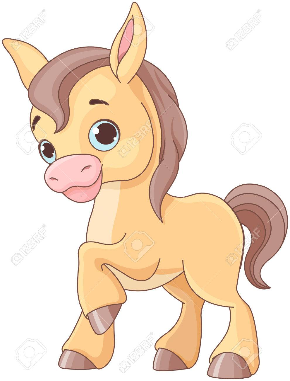 Illustration Of Cute Baby Horse Royalty Free Cliparts Vectors And Stock Illustration Image 83315078
